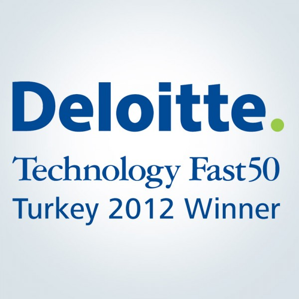 Deloitte_winner