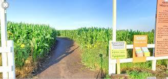 google street view ile mısır tarlası gezintisi